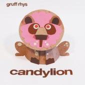 Candylion de Gruff Rhys