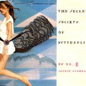 The Secret Society Of Butterflies de Blonde Redhead