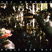 Whole New Way de The Horrors