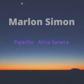 Pajarillo Alma Llanera de Marlon Simon