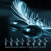Feathers: Meditation Music for Deep Sleep - Falling Asleep & Sleeping Ambient Relaxation Music, Stress Relief, Insomnia, Inner Peace, (Delicate Instrumental Background Music) by Deep Sleep Hypnosis Masters