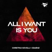 All I Want Is You van Christina Novelli