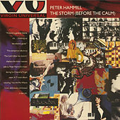 The Storm (Before The Calm) by Peter Hammill