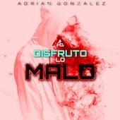Disfruto Lo Malo (Cover) de Adrián González
