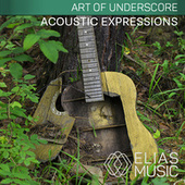 Acoustic Expressions by David Turtle Ramani