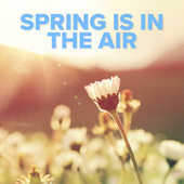 Spring Is In The Air de Various Artists