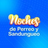 Noches de Perreo y Sandungueo de Various Artists