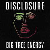 Big Tree Energy de Disclosure