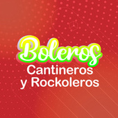 Boleros Cantineros & Rockoleros by Various Artists