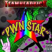 Pwn Star by Teamheadkick