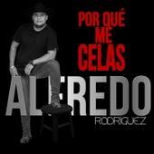¿Por Que Me Celas? by Alfredo Rodriguez