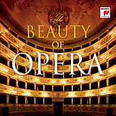 The Beauty of Opera von Various Artists