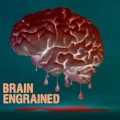 Brain Engrained de Big Mug Gail
