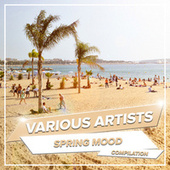 Spring Mood by Various Artists