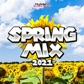 Spring Mix 2021 by Various Artists