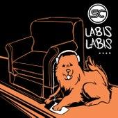 Labis-labis by Sponge Cola