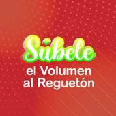 Súbele el Volumen al Reguetón de Various Artists