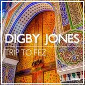 Trip to Fez fra Digby Jones