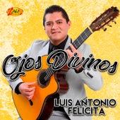 Ojos Divinos by Luis Antonio Felicita