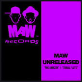 The Amazon / Tribal Flute by MAW Unreleased