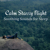 Calm Starry Night: Soothing Sounds for Sleep by Deep Sleep Music Academy