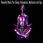 Peaceful Music For Sleep, Relaxation, Mediation and Spa by Color Noise Therapy