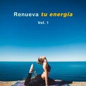 Renueva tu energía Vol. 1 de Various Artists