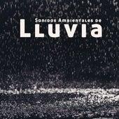Sonidos Ambientales de Lluvia - 1 Hora de Sonidos de Agua Pura para Dormir y Relajarse de Fabricantes de Lluvia