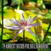 79 Ambient Sounds for Soul Searching de Japanese Relaxation and Meditation (1)