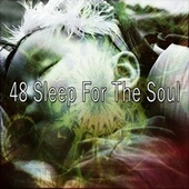 48 Sleep for the Soul de Lullaby Land