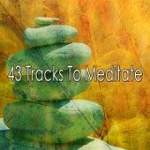 43 Tracks to Meditate de Massage Tribe