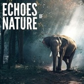 Echoes of Nature by Echoes of Nature