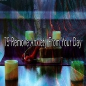 75 Remove Anxiety from Your Day de Meditación Música Ambiente