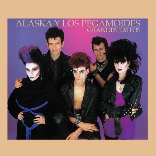 Grandes Éxitsos - Edición Para Coleccionistas by Alaska Y Los Pegamoides