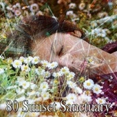 80 Sunset Sanctuary by Baby Sweet Dream (1)