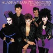 Grandes Éxitos- Remasters by Alaska Y Los Pegamoides