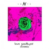 Love Goodbyes (Remixes) by Sgntr