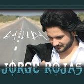 La Vida by Jorge Rojas