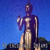 49 Encourage Dreams by Lullabies for Deep Meditation