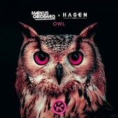 Owl by Markus Gardeweg