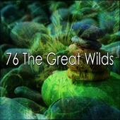 76 The Great Wilds de White Noise Research (1)