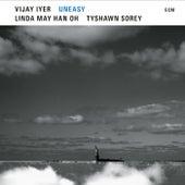 Entrustment von Vijay Iyer