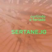 Curtindo o Feriado Sertanejo de Various Artists