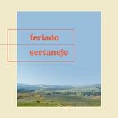 Feriado Sertanejo de Various Artists
