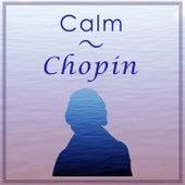 Calm Chopin by Frédéric Chopin
