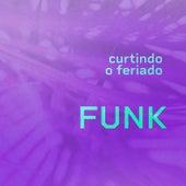 Curtindo o Feriado Funk de Various Artists