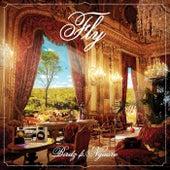 Fly by Birdz