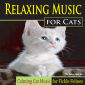 Relaxing Music for Cats (Calming Cat Music for Fickle Felines) by The Kokorebee Sun
