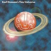 Karl Denson's Tiny Universe de Karl Denson