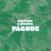 Curtindo a Piscina Pagode de Various Artists